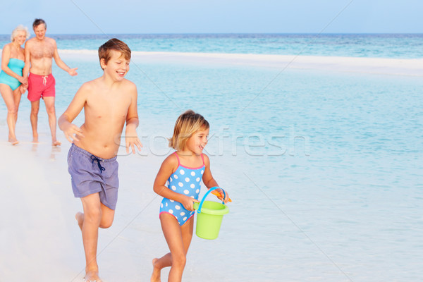 Grands-parents petits enfants vacances à la plage femme plage Photo stock © monkey_business
