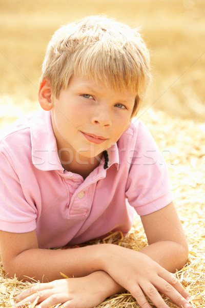 Portrait Of Boy Laying In Summer Harvested Field Stock photo © monkey_business