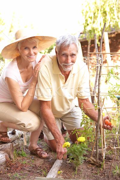 Порно фото молоденькие с пожилыми