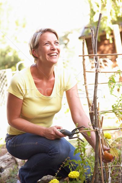женщину расслабляющая саду счастливым человек улыбаясь Сток-фото © monkey_business