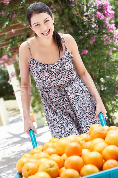 女性 プッシング 手押し車 オレンジ 女性 幸せ ストックフォト © monkey_business