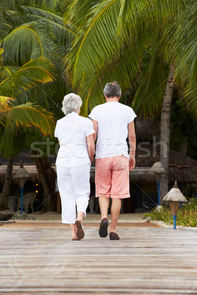 Rear View Of Senior Couple Walking On Wooden Jetty Stock photo © monkey_business
