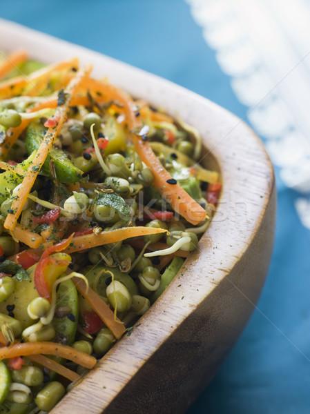 Bowl of Moong Bean Tikka Salad Stock photo © monkey_business