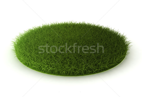 grass lawn  Stock photo © montego