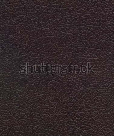 Rosolare pelle texture rosso design natura Foto d'archivio © montego