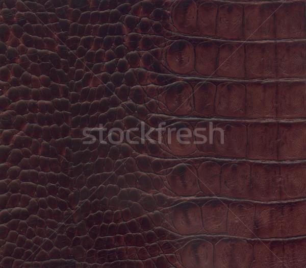 коричневый крокодила кожа текстуры черный моде Сток-фото © montego