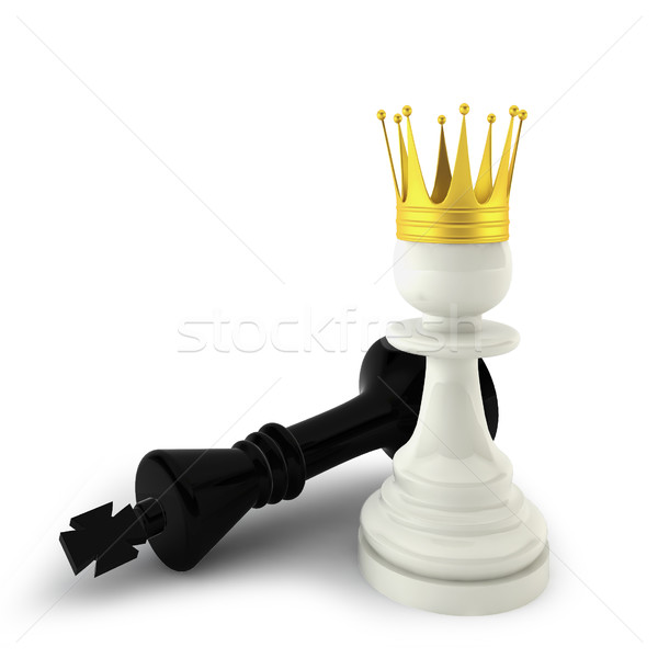 Defeated king and a pawn Stock photo © montego