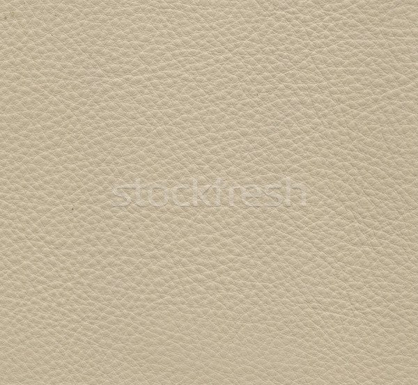 white leather texture Stock photo © montego