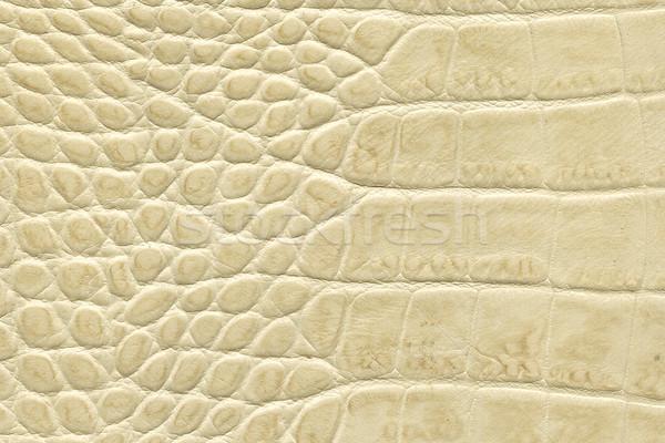 beige crocodile leather texture Stock photo © montego