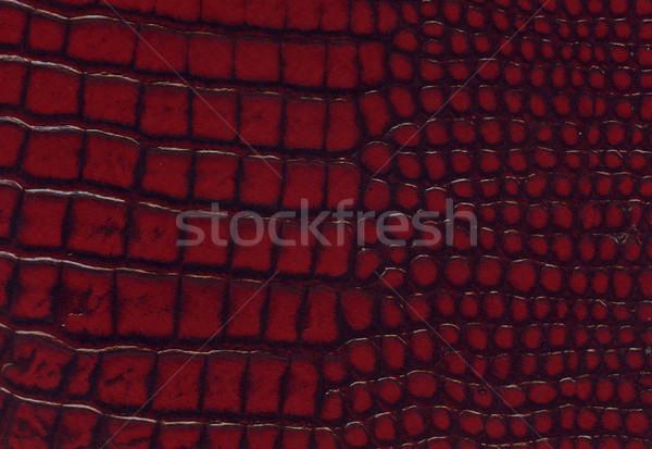 crocodile red leather texture Stock photo © montego