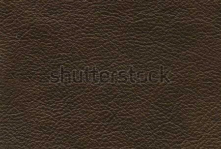 bronze leather texture Stock photo © montego