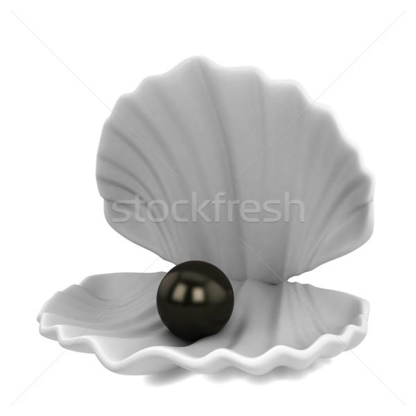Gyöngy bent kagyló 3d illusztráció izolált fehér Stock fotó © montego