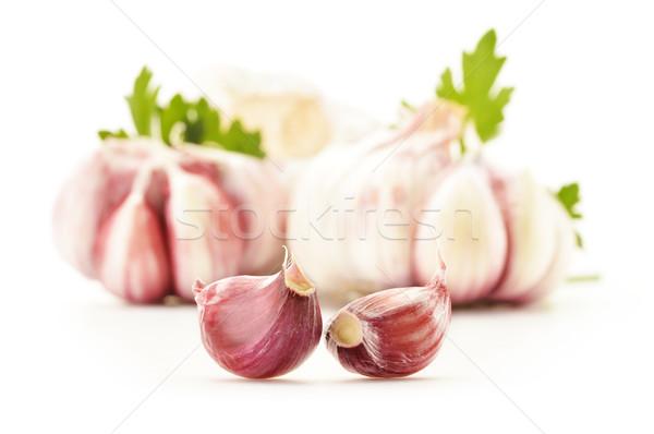新鮮な ニンニク パセリ 孤立した 白 食品 ストックフォト © monticelllo