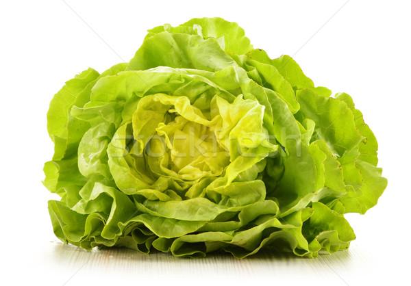 Fresh lettuce isolated on white Stock photo © monticelllo