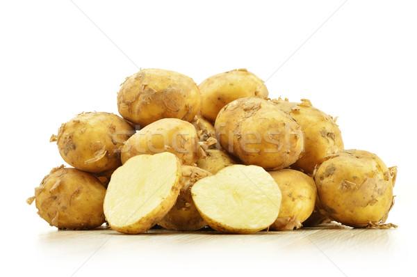 Nyers krumpli izolált fehér természet konyha Stock fotó © monticelllo