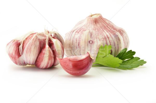 Friss fokhagyma petrezselyem izolált fehér étel Stock fotó © monticelllo