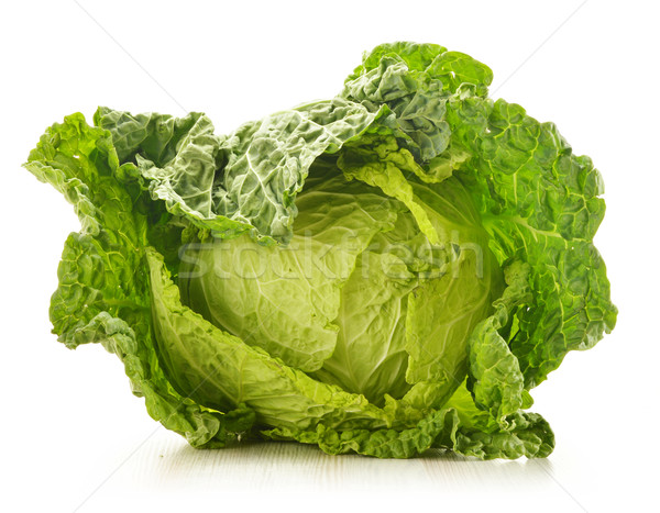Fresh cabbage isolated on white Stock photo © monticelllo