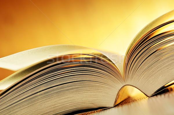Kitap tablo eğitim yazı bilim okuma Stok fotoğraf © monticelllo