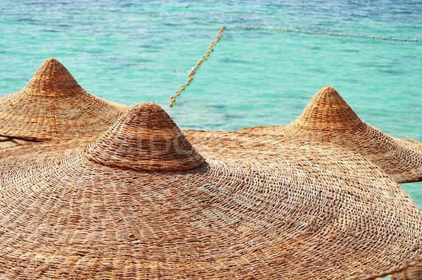 Görmek plaj sıcak yaz gün su Stok fotoğraf © monticelllo