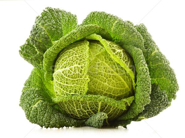 Taze lahana yalıtılmış beyaz sebze bakkal Stok fotoğraf © monticelllo