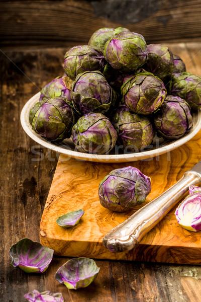 Violet sprouts Stock photo © Moradoheath