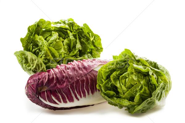 Fresh organic lettuce hearts Stock photo © Moradoheath