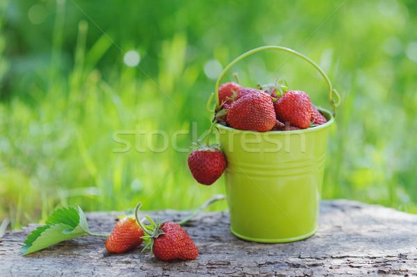 Freshly picked ripe strawberries bucket on a wooden background Stock photo © Moravska