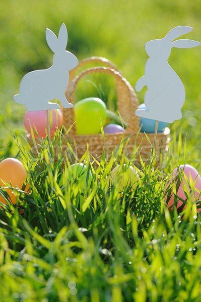 Huevos de Pascua cesta fuera conejo decoraciones hierba Foto stock © Moravska