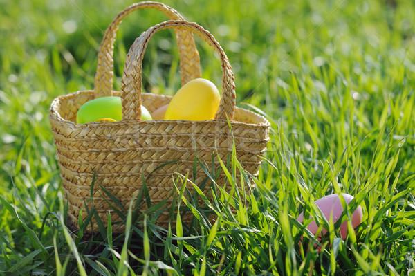 Cesta ovos de páscoa grama verde ao ar livre grama verde Foto stock © Moravska