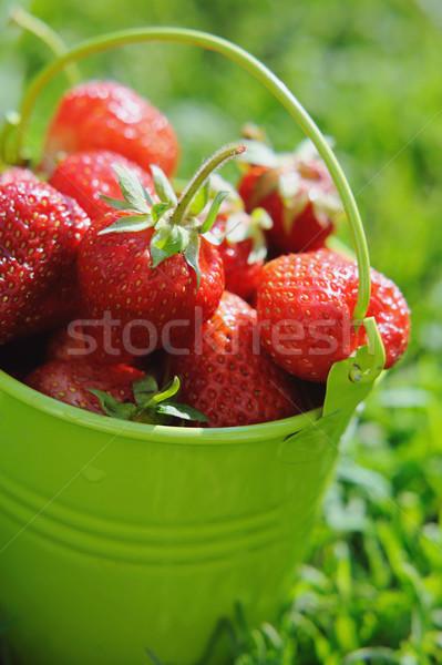 Morango balde grama comida natureza fundo Foto stock © Moravska