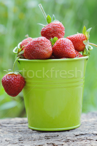 A pail full of freshly picked strawberries Stock photo © Moravska