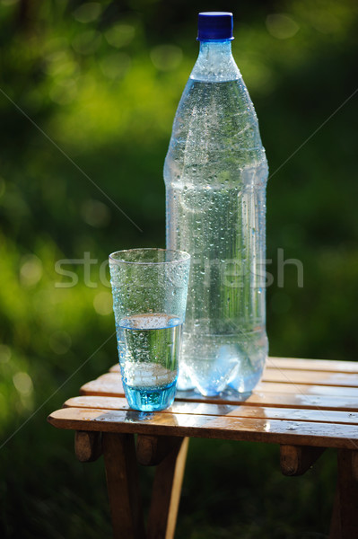 Glass of water and bottle with mineral water on nature background Stock photo © Moravska