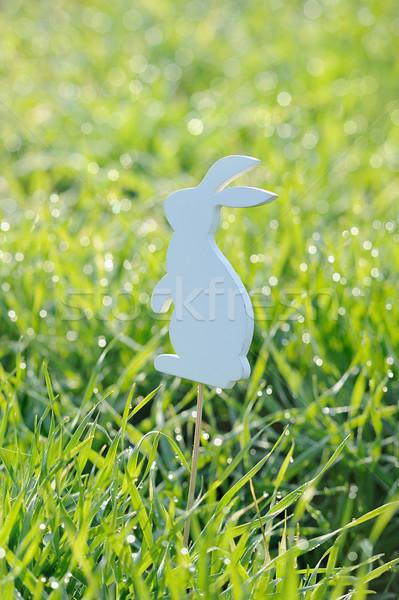 Páscoa coelhos decorações fresco primavera grama Foto stock © Moravska