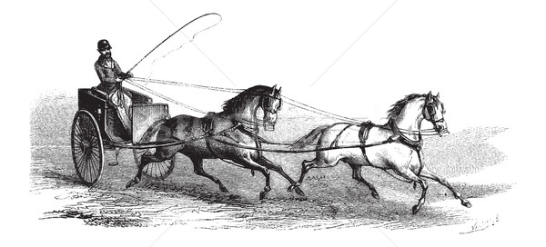 2-wheeled Cart drawn by 2 Horses in Tandem, vintage engraving Stock photo © Morphart