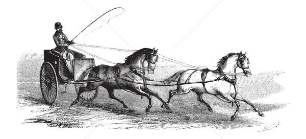 корзины лошадей тандем Vintage Сток-фото © Morphart