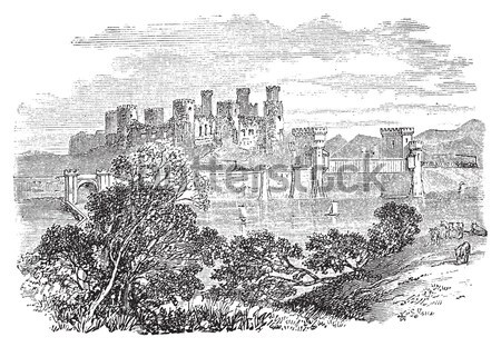 The ruins of Palmyra in Syria vintage engraving Stock photo © Morphart