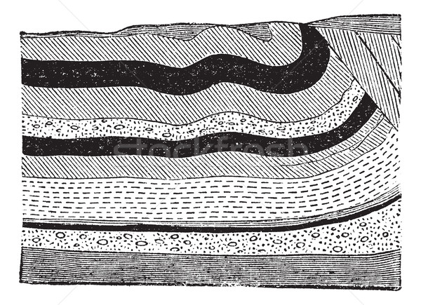 Illustration of coal beds in layers in the ground, vintage engra Stock photo © Morphart