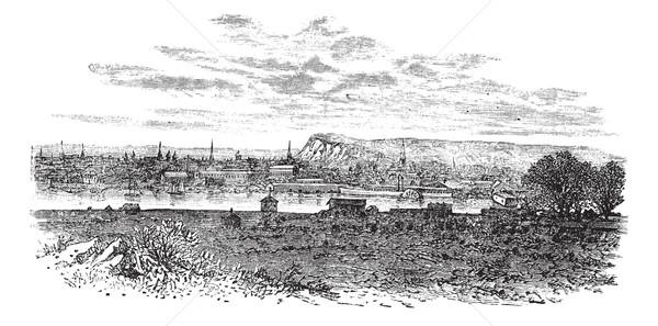 Sussex İngiltere bağbozumu oyulmuş örnek ansiklopedi Stok fotoğraf © Morphart