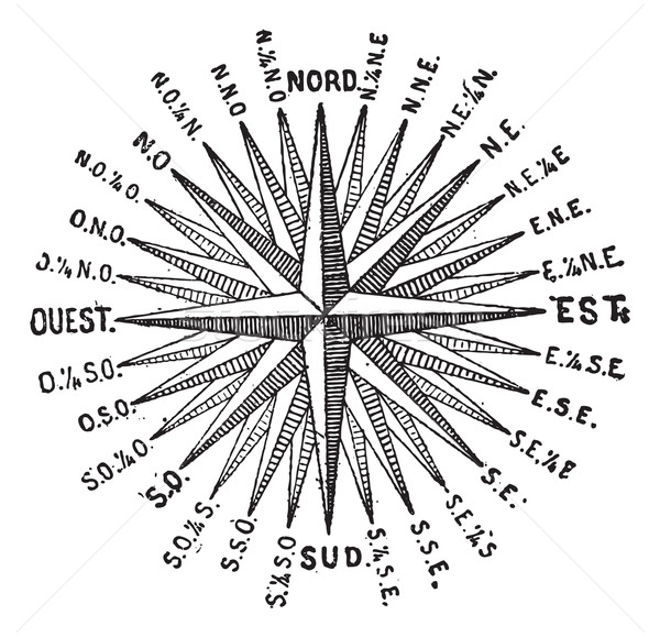 Compass Rose or Windrose, vintage engraving. Stock photo © Morphart