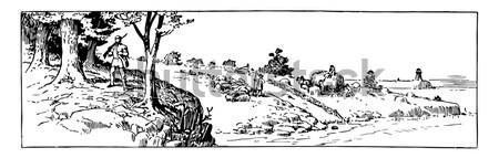 Stock fotó: Többszörös · föld · klasszikus · vésés · gravírozott · illusztráció