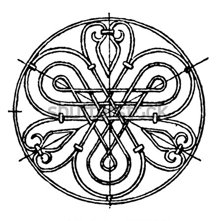 Celtic design with knotted lines of two birds Stock photo © Morphart