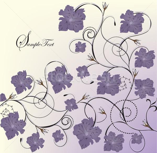 Klasszikus meghívó virágmintás terv lila virágok Stock fotó © Morphart