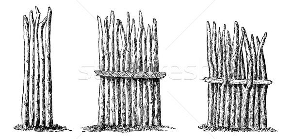 Types of Fencing, vintage engraving Stock photo © Morphart