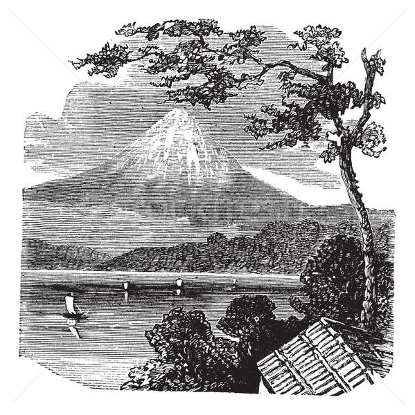 Fuji Dağı Japonya bağbozumu oyma eski oyulmuş Stok fotoğraf © Morphart