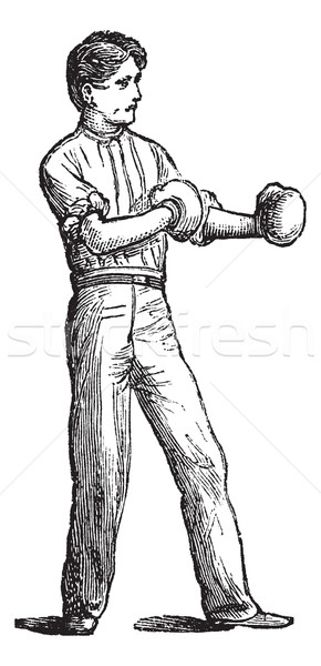 Position of the boxer vintage engraving Stock photo © Morphart