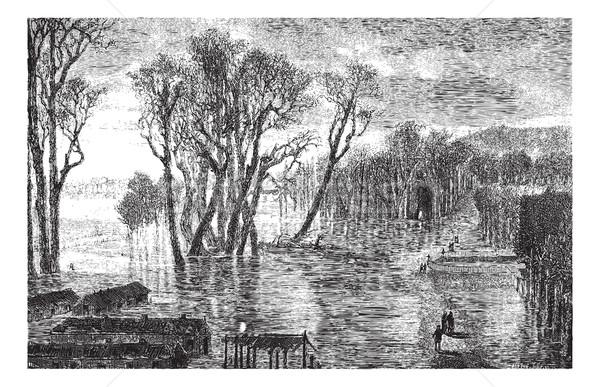 наводнения зима рисунок Vintage иллюстрация Сток-фото © Morphart