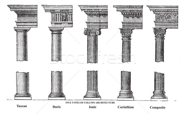 Five types of old column architecture old engraving Stock photo © Morphart