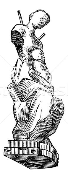 Pleśń statuetka vintage kobieta Zdjęcia stock © Morphart