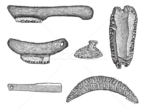 Prehistoric saws, vintage engraving. Stock photo © Morphart