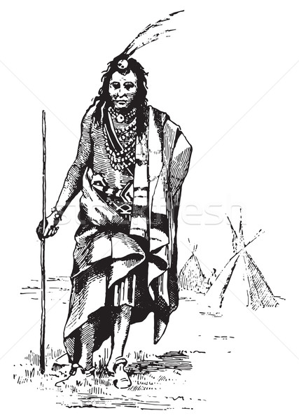Red Indian, vintage engraving. Stock photo © Morphart